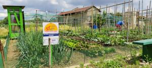 StessoCielo inaugura l'orto urbano a Collegno